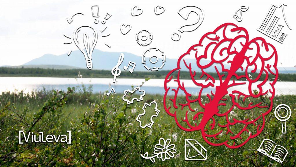 Viuleva Blogi Markkinointiviestintä Vaikuttaa Mielen Kautta Toimintaan